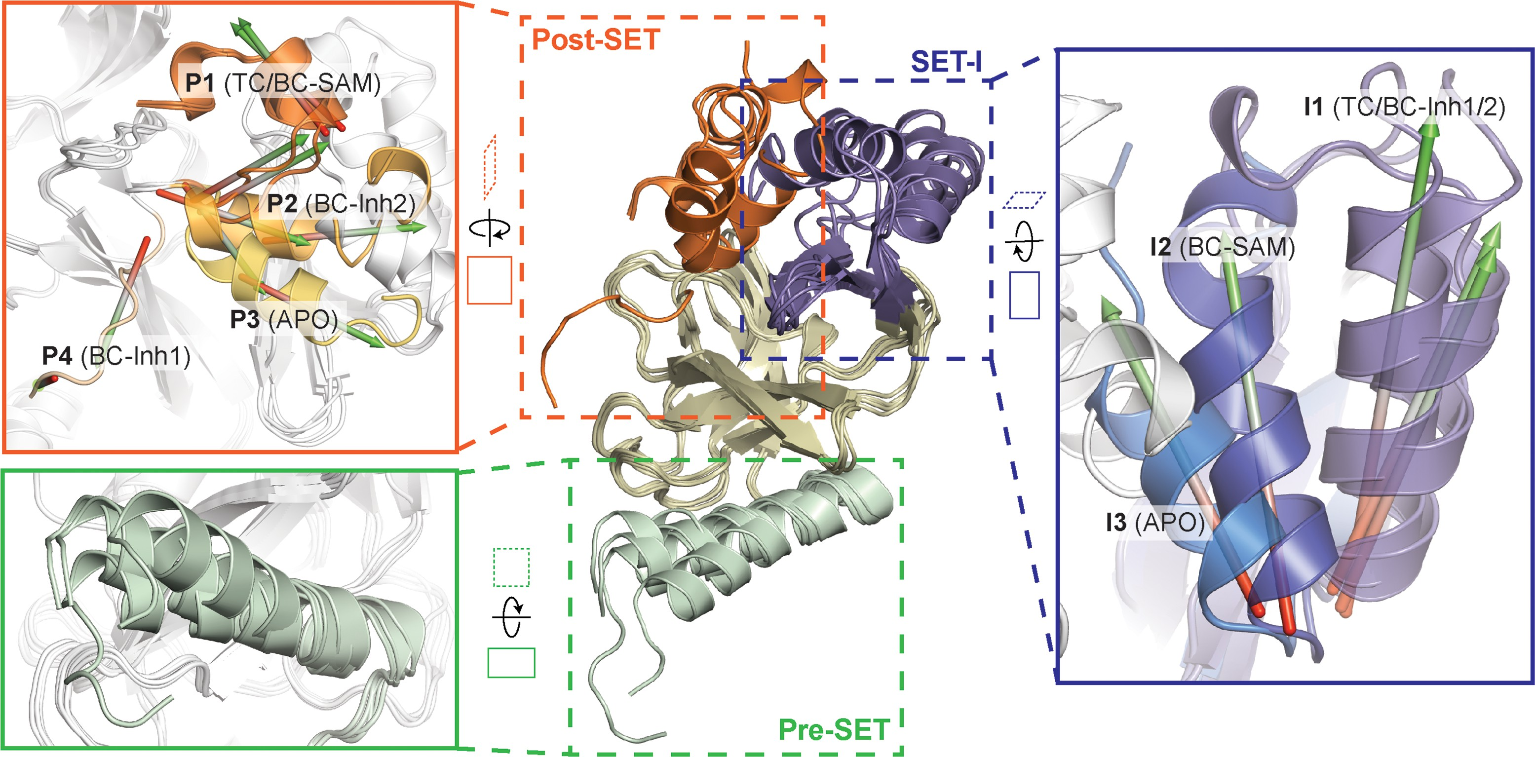 The Dynamic Conformational Landscape Of The Protein Methyltransferase Setd8 Elife
