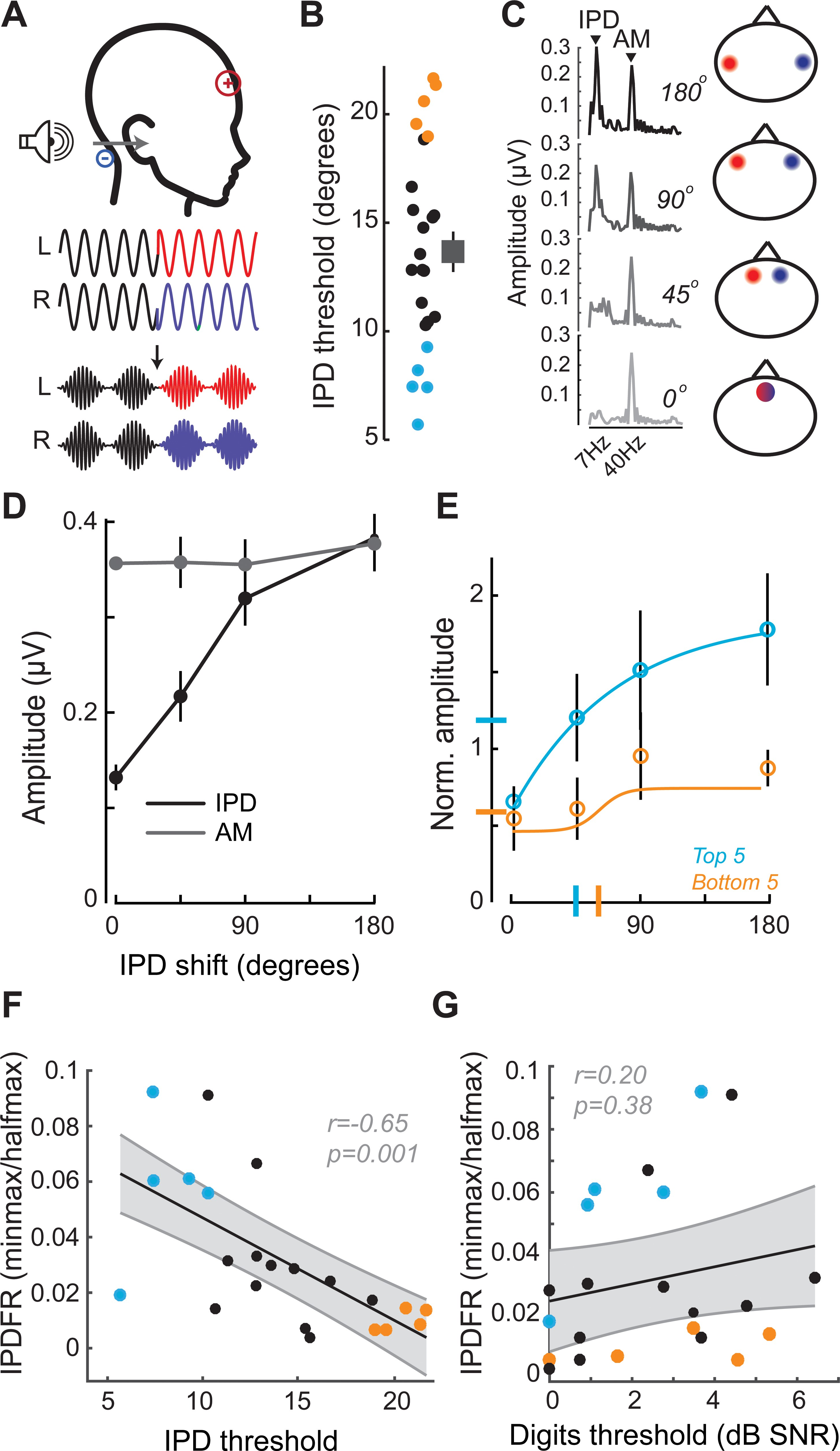 Bottom-up and top-down neural signatures of disordered