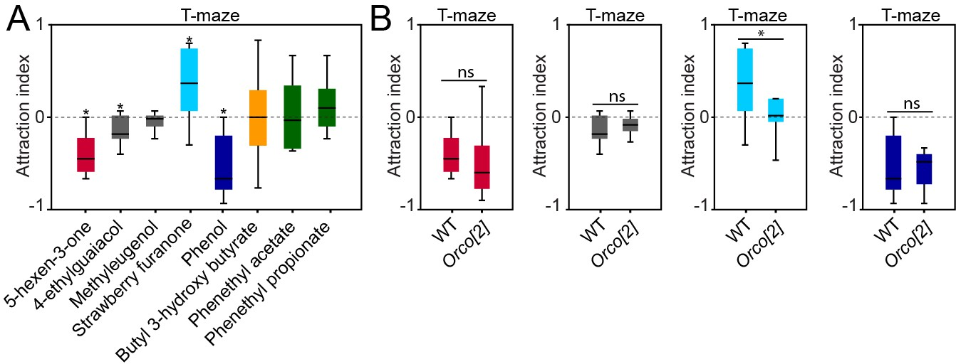 Figures and data in Olfactory channels associated with the