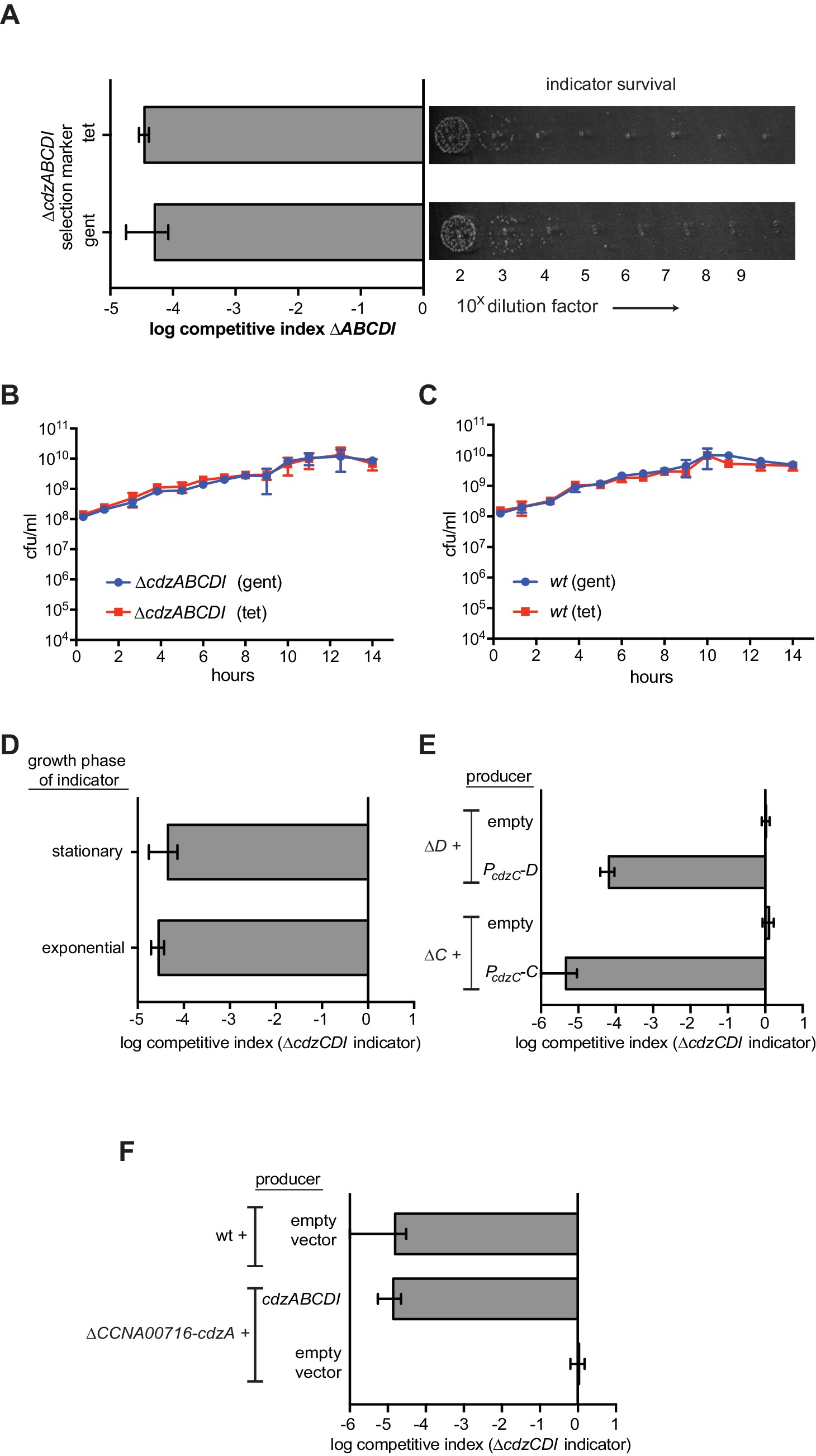 an analysis of killing mechanism Antisense rna regulation of the par post-segregational killing system: structural analysis and mechanism of rna regulated post-segregational killing.