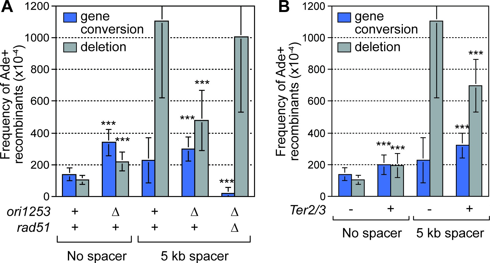 Inter fork strand annealing causes genomic deletions during the download asset open asset pooptronica