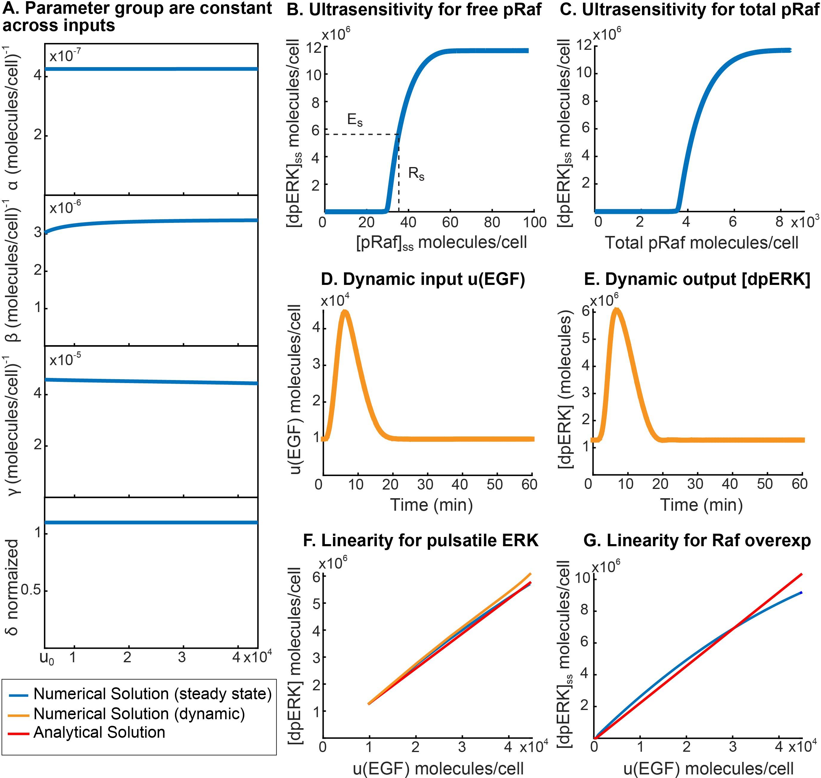 Signal Dynamics Self Canceling Turn Signal Module Wiring Diagram from elifesciences.org
