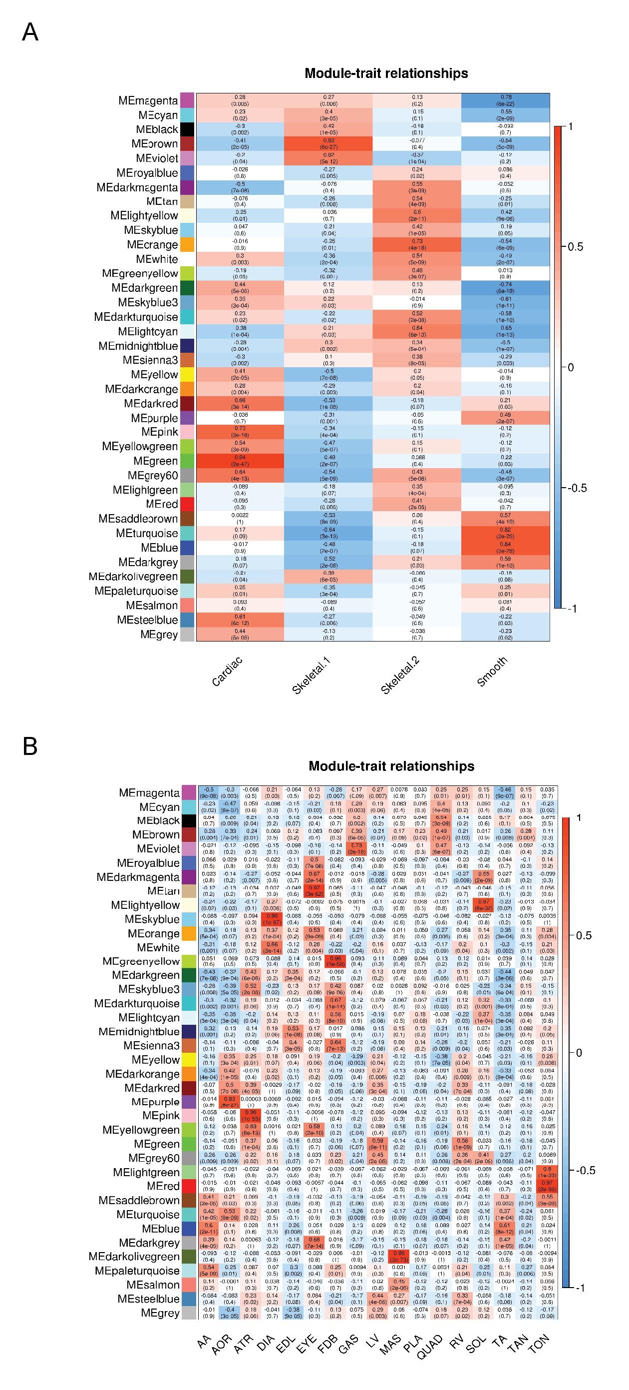 Transcriptional Profiling Reveals Extraordinary Diversity Among Skeletal Muscle Tissues Elife
