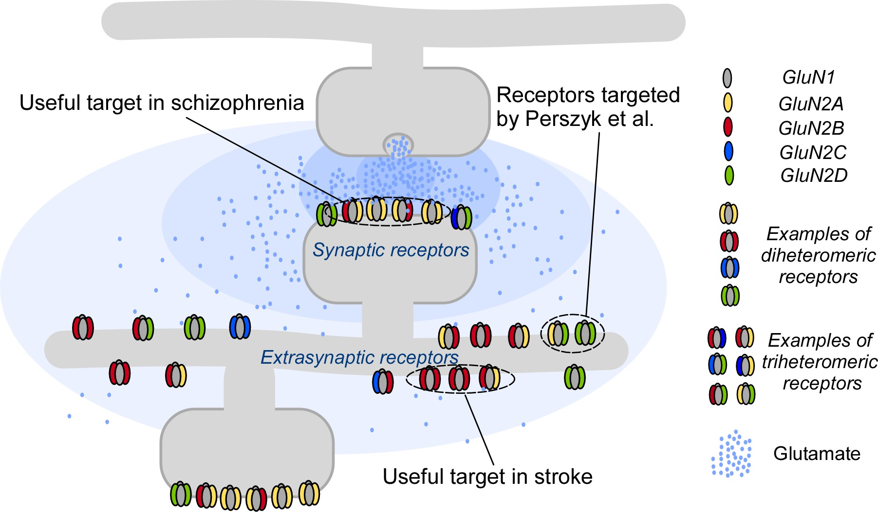 Pharmacology A Swiss Army Knife For Targeting Receptors Elife