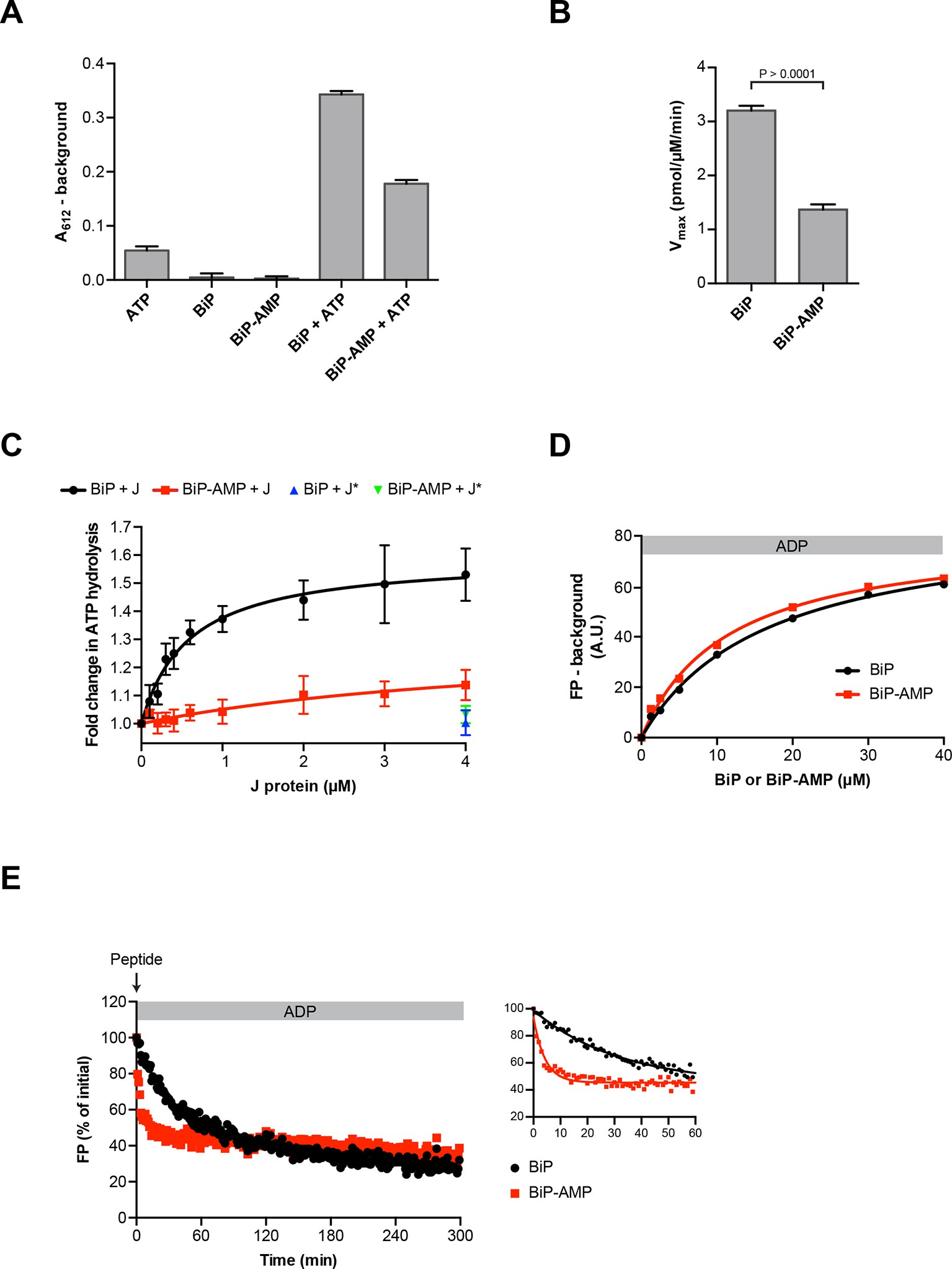 AMPylation matches BiP activity to client protein load in the