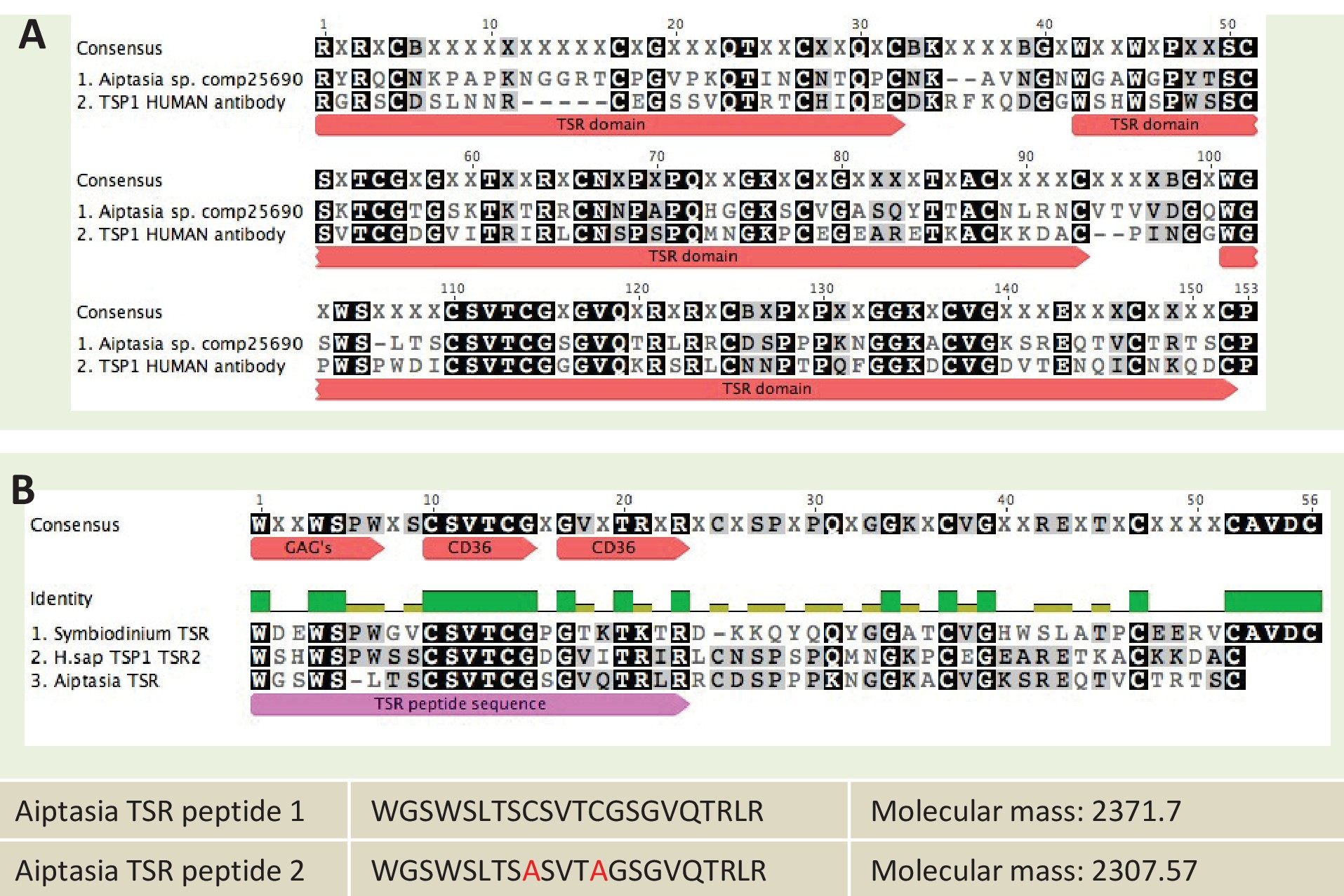 A diverse host thrombospondin type 1 repeat protein repertoire