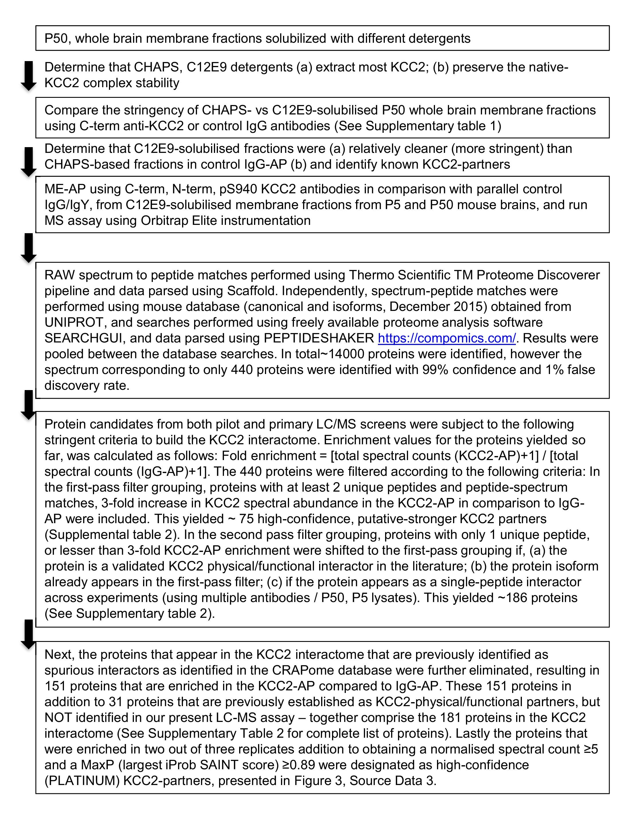 Native kcc2 interactome reveals pacsin1 as a critical regulator of download asset open asset nvjuhfo Choice Image